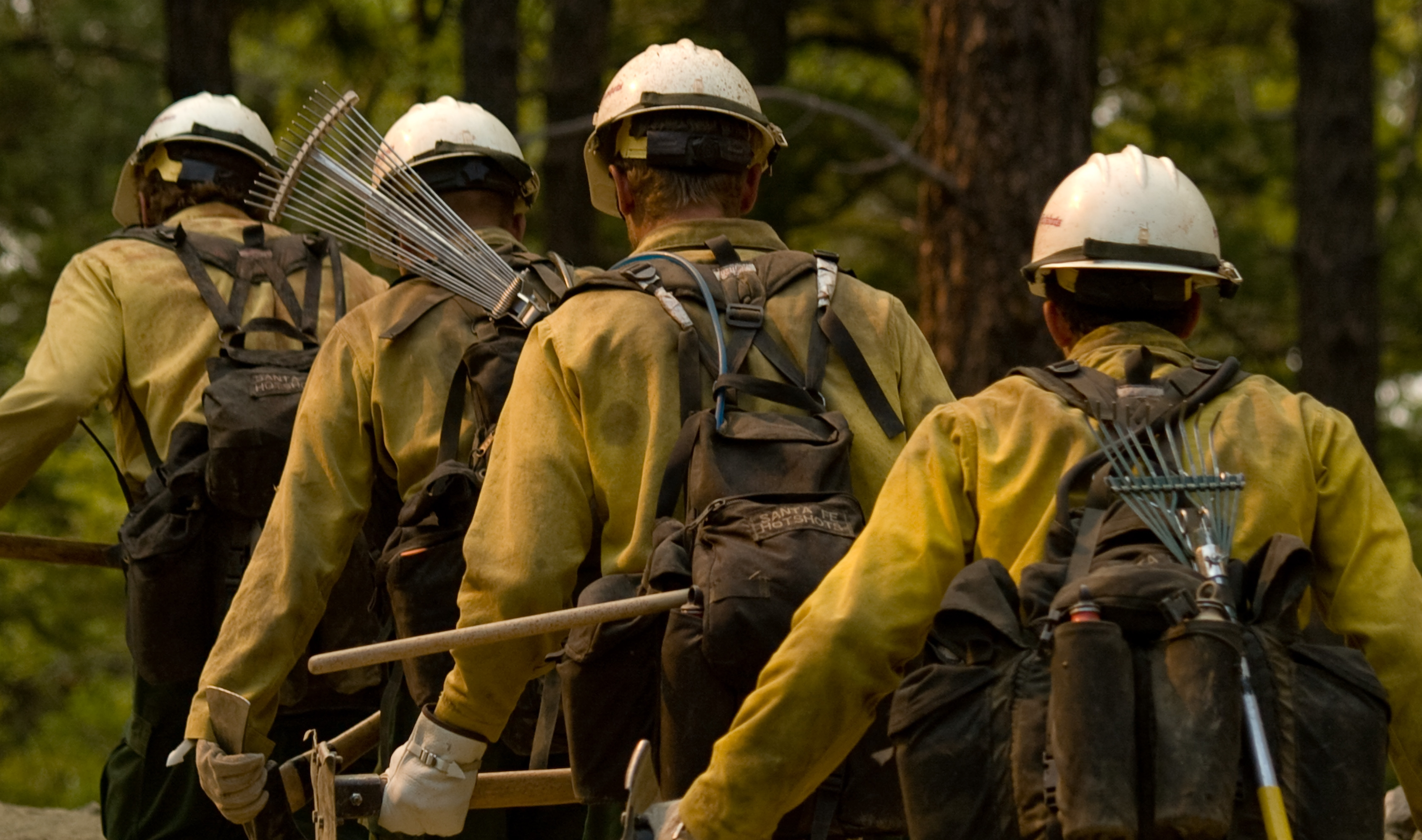 Wildland firefighters walk in single file away from the camera.