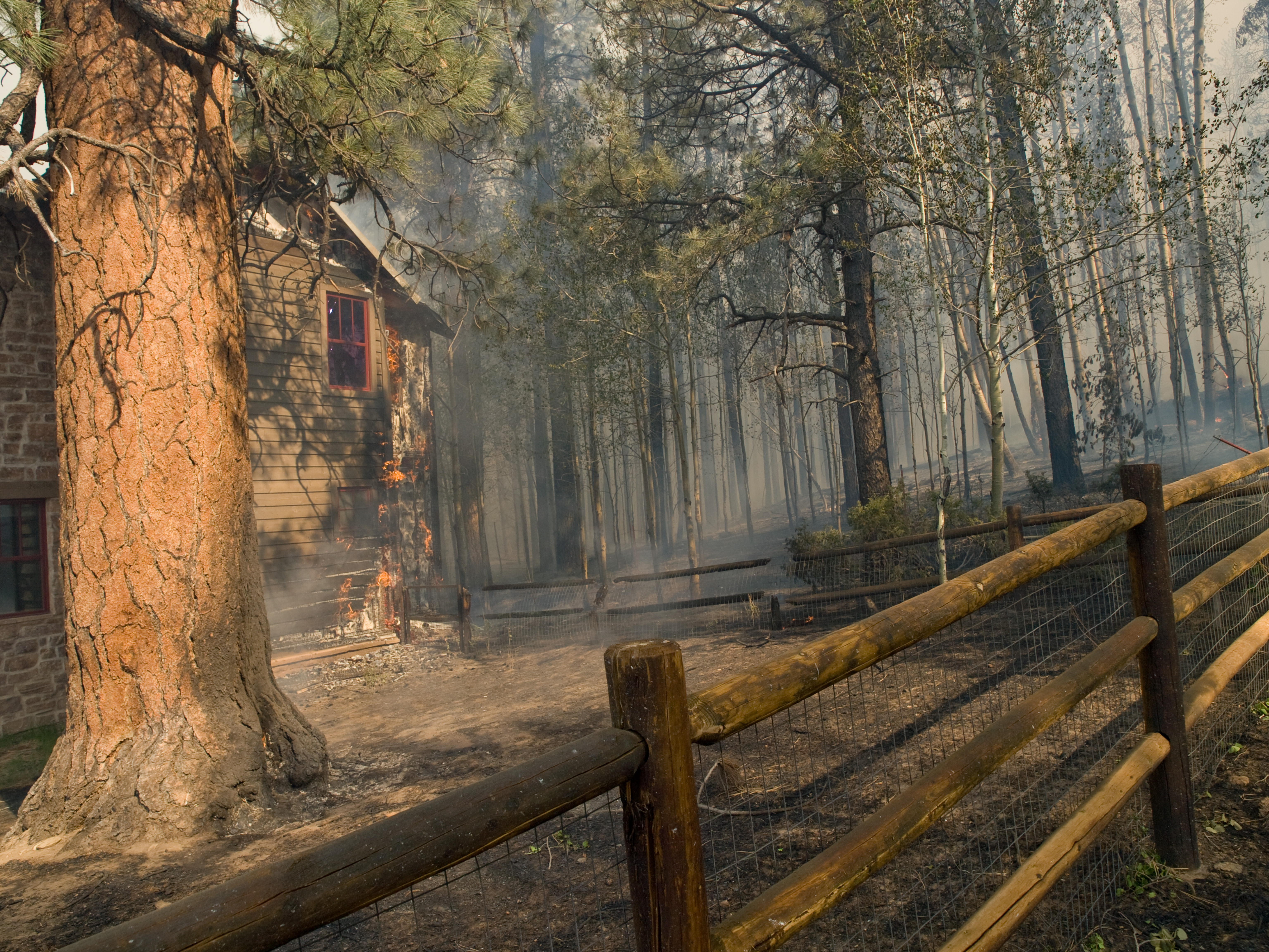 A home burns in the Wallow Fire.