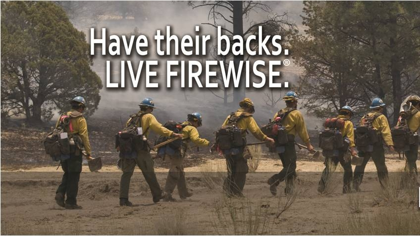 Image of wildland fire fighters