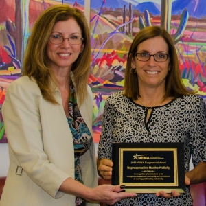 Arizona Department of Emergency and Military Affairs Deputy Director Wendy Smith-Reeve presents Rep. Martha McSally with the 2016 NEMA Congressional Award.